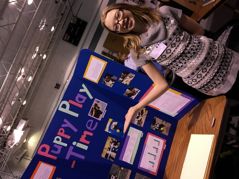 Science Fair Picture 3